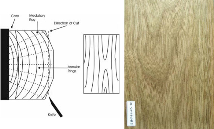 Crown cutting (Flat sliced)