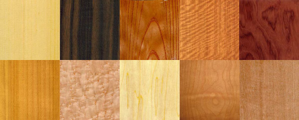 Over 80 different types of wood species